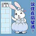 金元寶兔兔-你住在隔壁嗎?