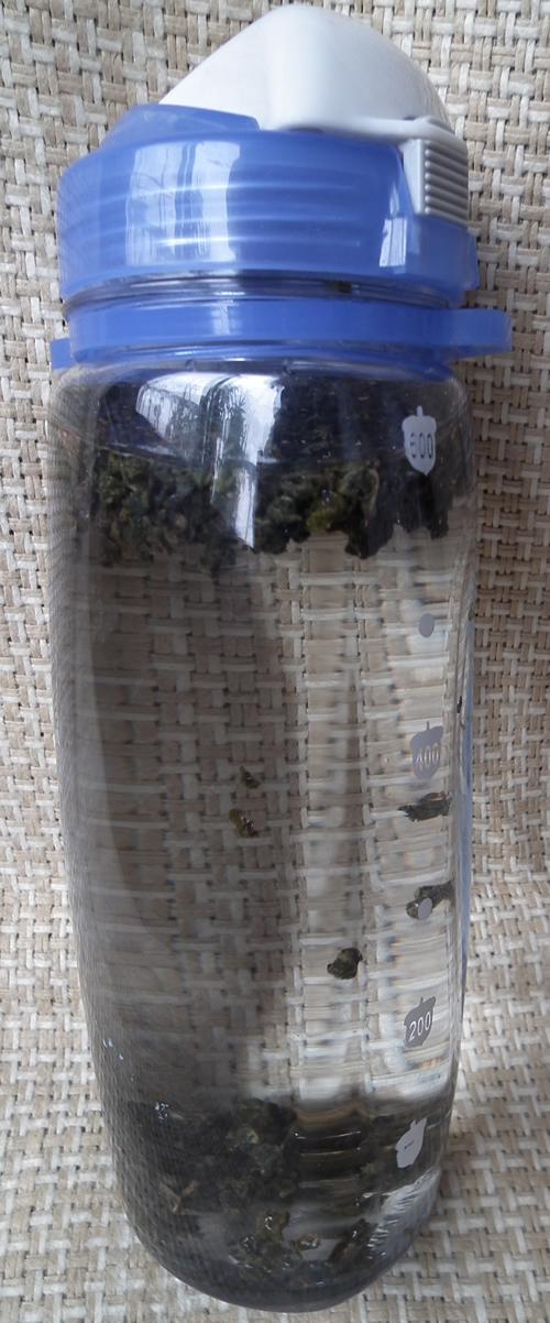 春曦農場-有機冷泡茶2