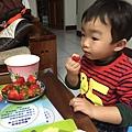就是愛草莓