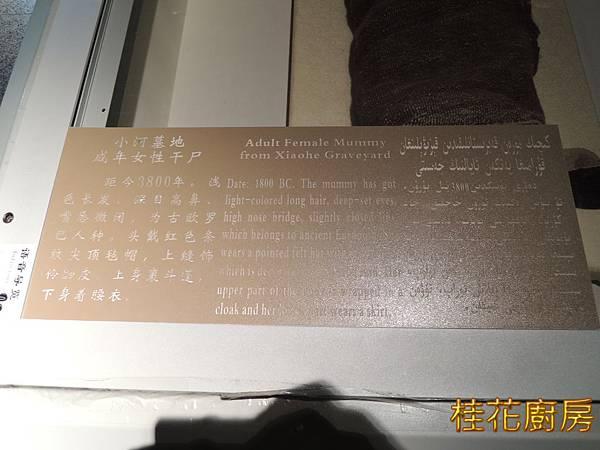 DSCN4711.JPG