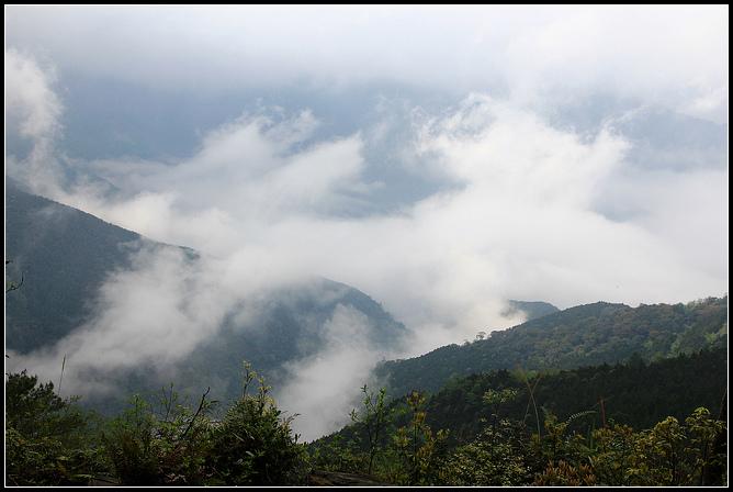 野馬瞰山_015.JPG