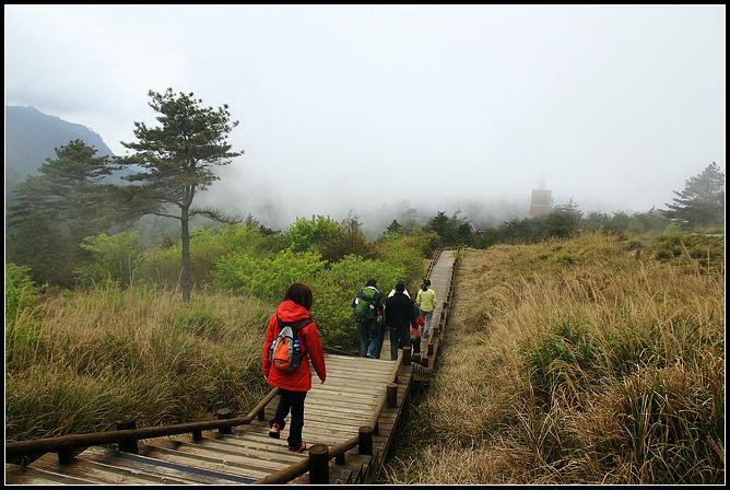 雲霧步道_020.JPG