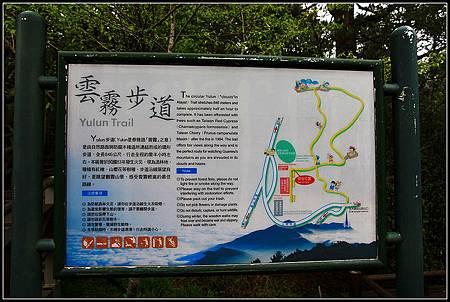 雲霧步道_022.JPG