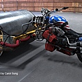 rollerhog_01_900.jpg