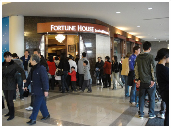 FortuneHouse_01.jpg
