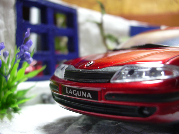 Laguna(060602)-3