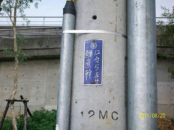 100_4921.JPG