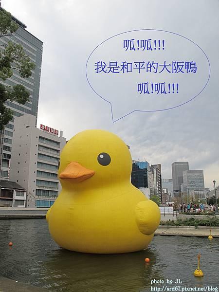 IMG_40491.jpg
