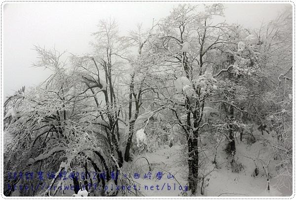 西岭雪山玩雪 477.JPG