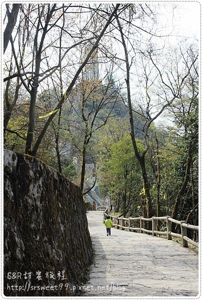九黃山猿王洞 456