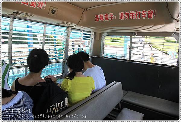 雅安碧峰峽+望魚古鎮 079