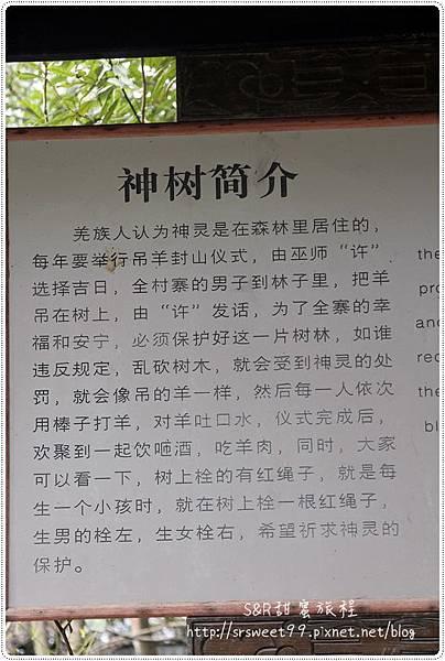 九黃山猿王洞 445