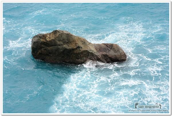 20091120花蓮發現樹湖+漁業中心 233.jpg