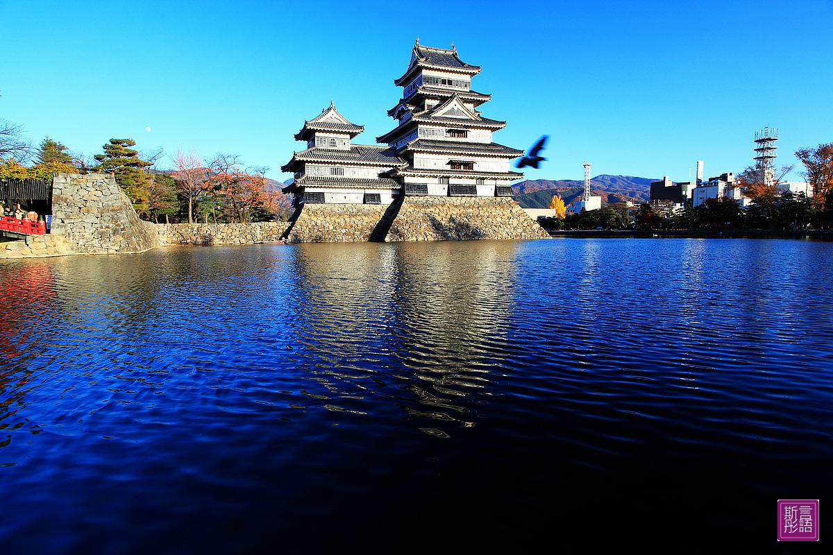 松本城- (11)
