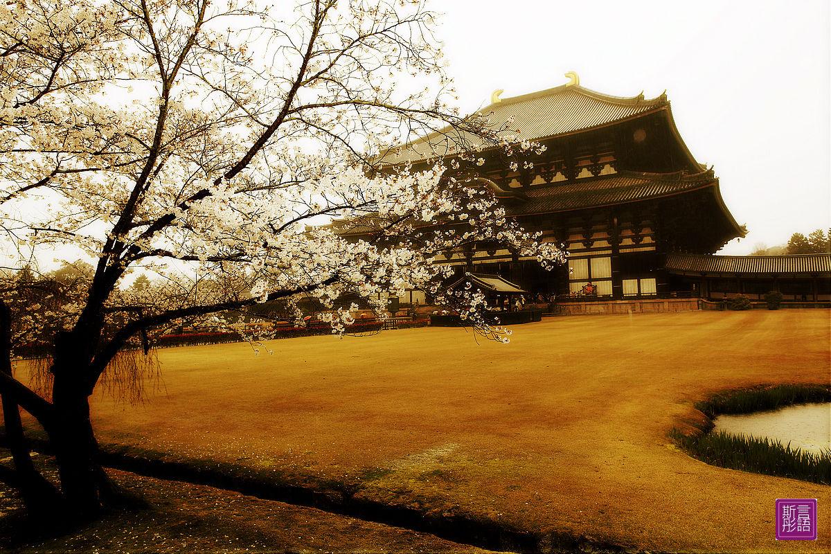 東大寺 (62)