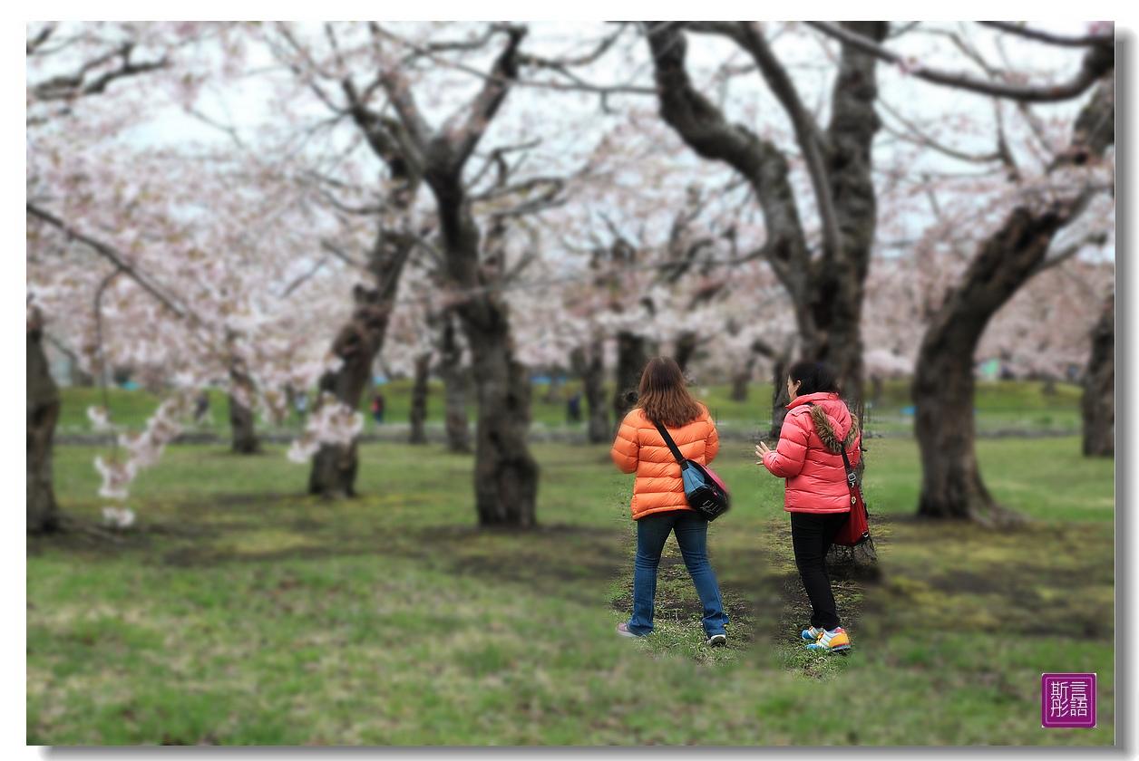 24.五稜廓公園.. (148)