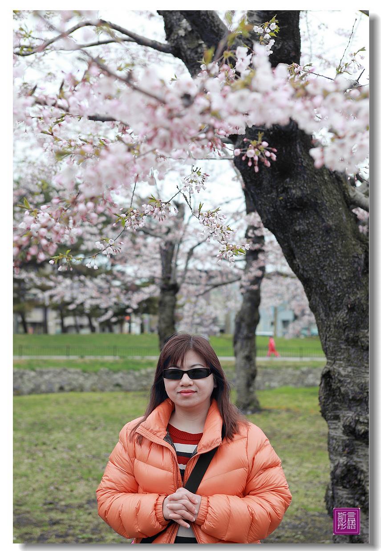 24.五稜廓公園.. (157)