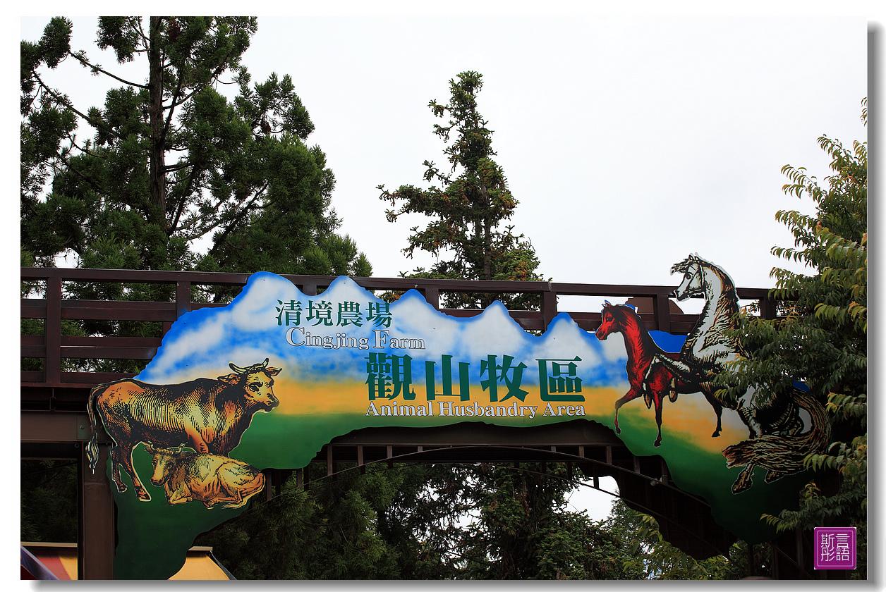 清境農場.上 (37)