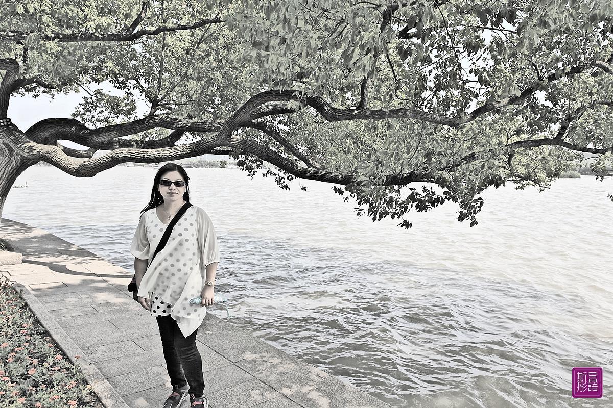 南湖.煙雨樓 (78)
