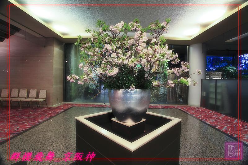 京都國際飯店 -20090403 (19)