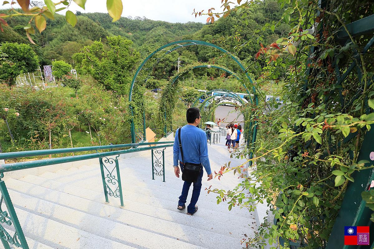 雅聞七里香玫瑰森林 (28)