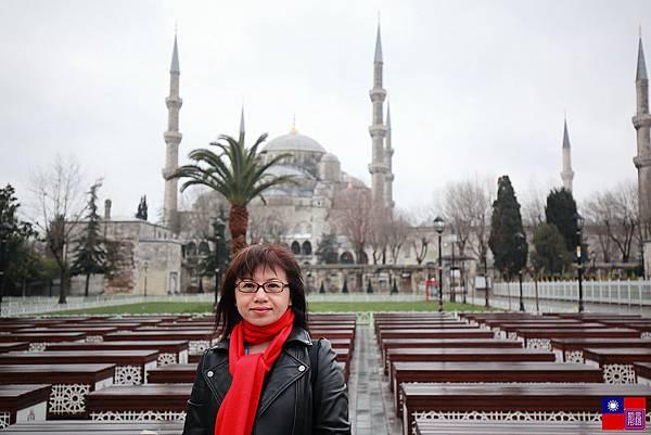 藍色清真寺 (14)