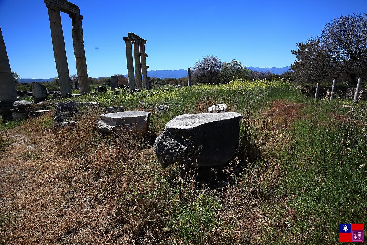 阿芙蘿迪西亞斯古城遺跡 (72)