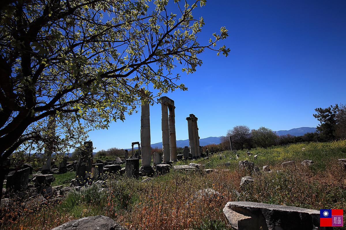 阿芙蘿迪西亞斯古城遺跡 (76)