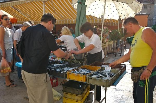 賣魚的攤位