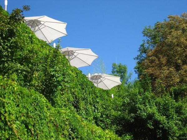 有陽傘就有咖啡