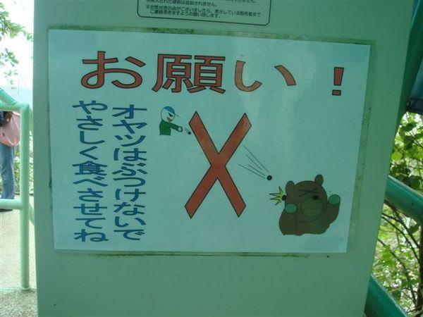 不可以砸熊