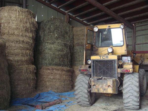 堆高高的稻草