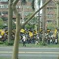 逆轉勝青年團,旗子看起來蠻有氣魄的