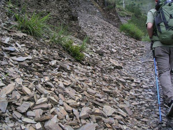 這段路都沒有泥土地,都是碎石地
