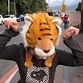 離開前發現的可愛老虎頭!