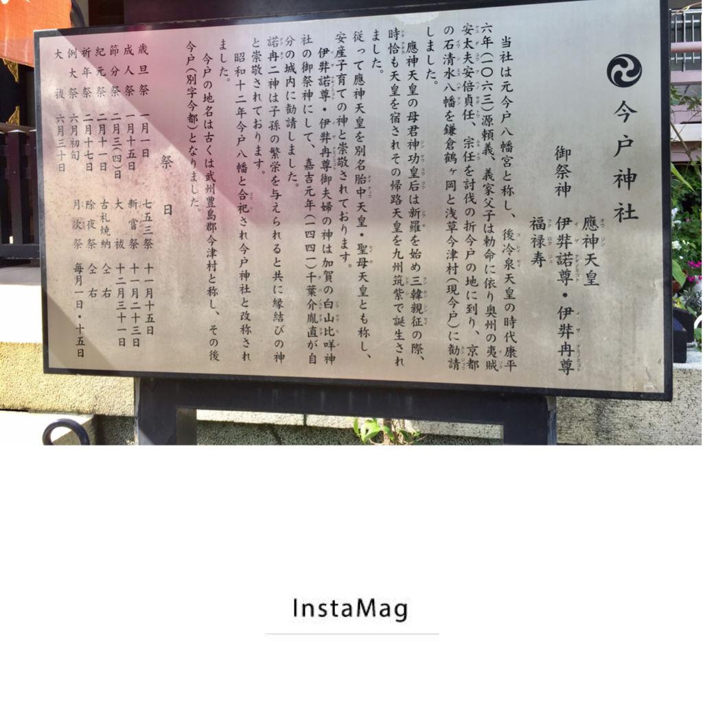 IMG_8489.JPG