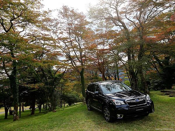 Subaru-Forester_2014_800x600_wallpaper_15