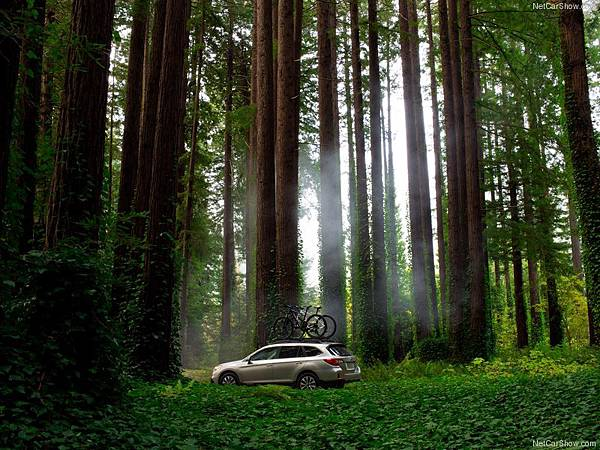 Subaru-Outback_2015_800x600_wallpaper_1b
