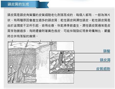 圖片 3.BMP