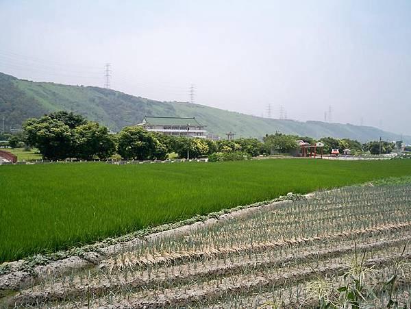 台1甲南舊線 04.JPG