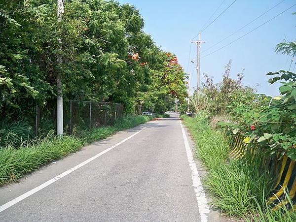 台1 181.5k~大度溪橋 24.JPG
