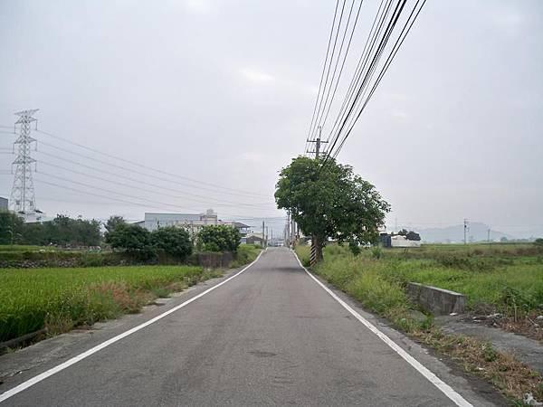 再訪中116 39.JPG