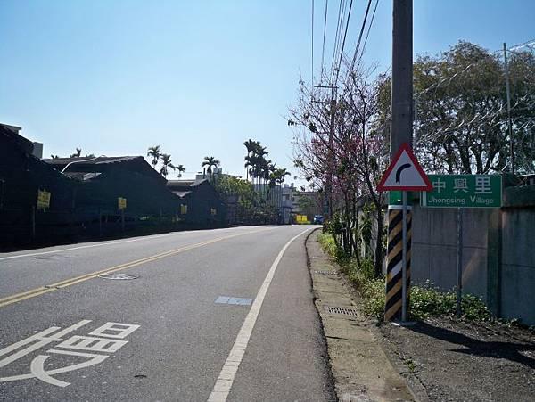縣道129中興嶺以北 78.JPG