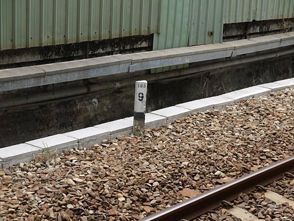 沙鹿火車站 38