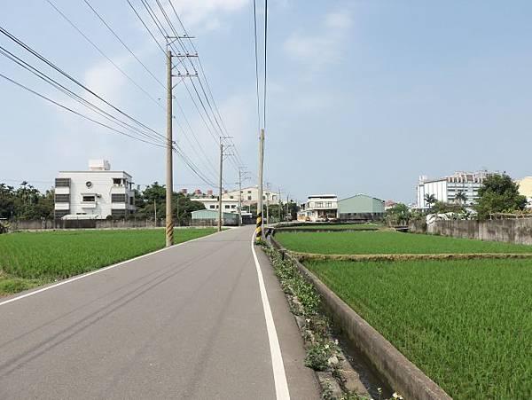 再訪中84-1 11.JPG