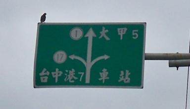 台1甲南.大甲溪橋舊線 09.JPG