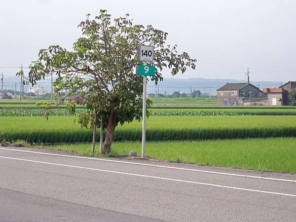 縣道140 12k以西 19.JPG