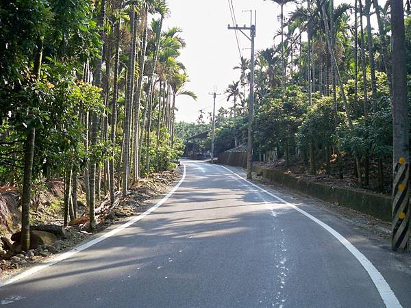 中118山區路段再訪 14.JPG