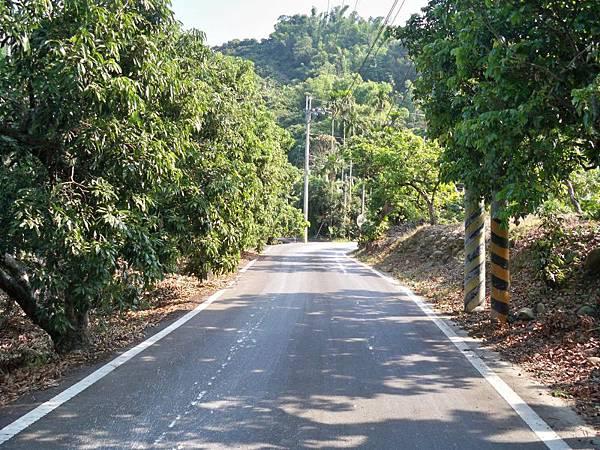 中118山區路段再訪 16.JPG