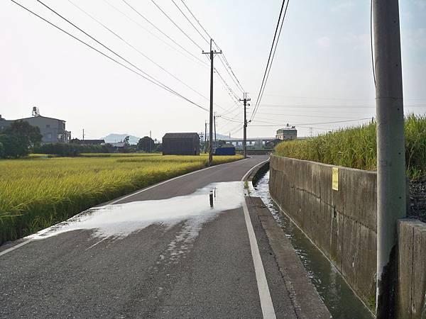 稻田軼事 收割01.JPG